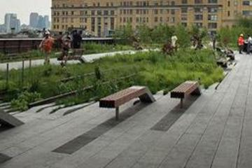 new-york-high-line-park-rundgang-in-new-york-city-48215