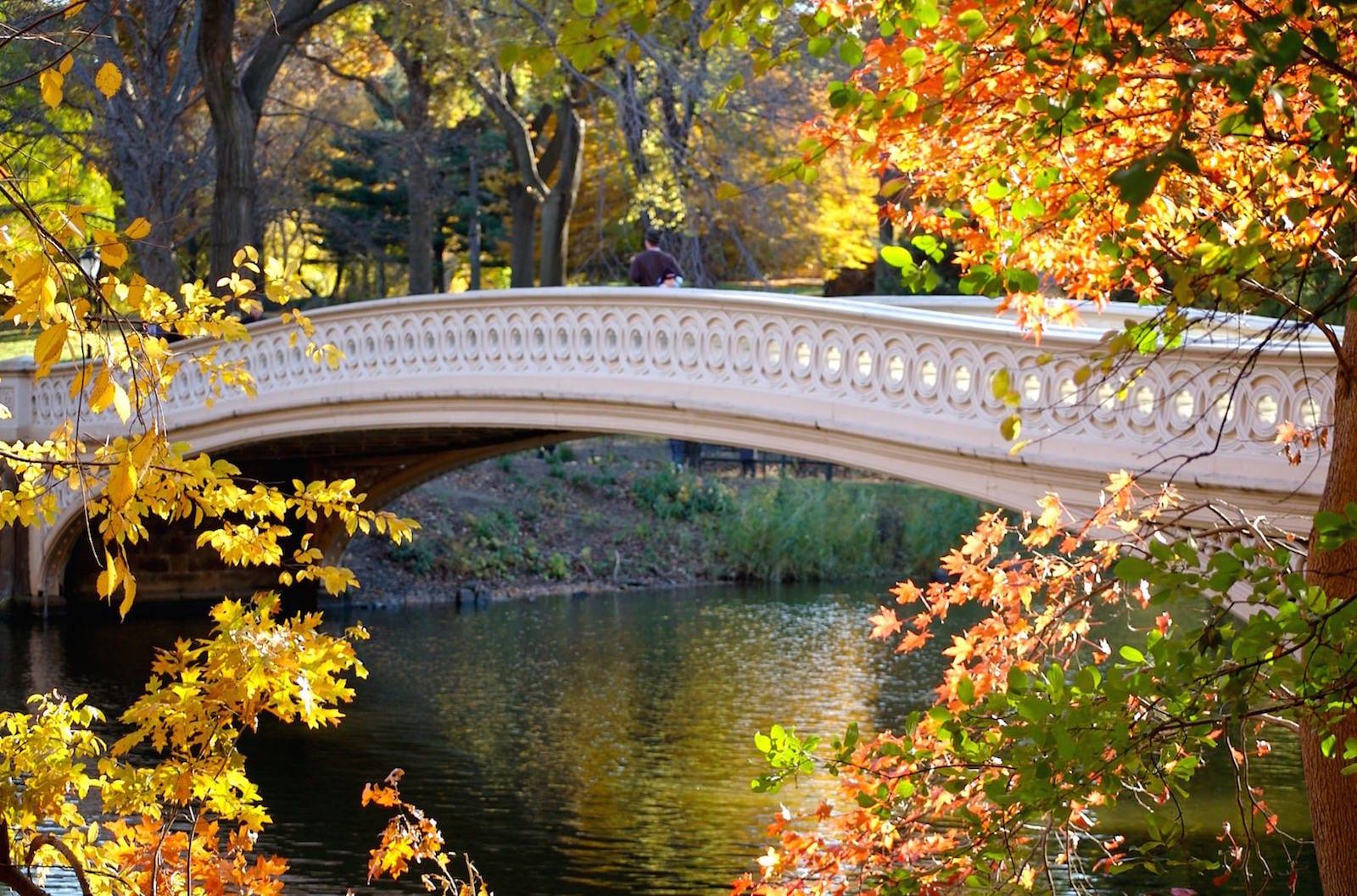 Bow_Bridge_central_Park