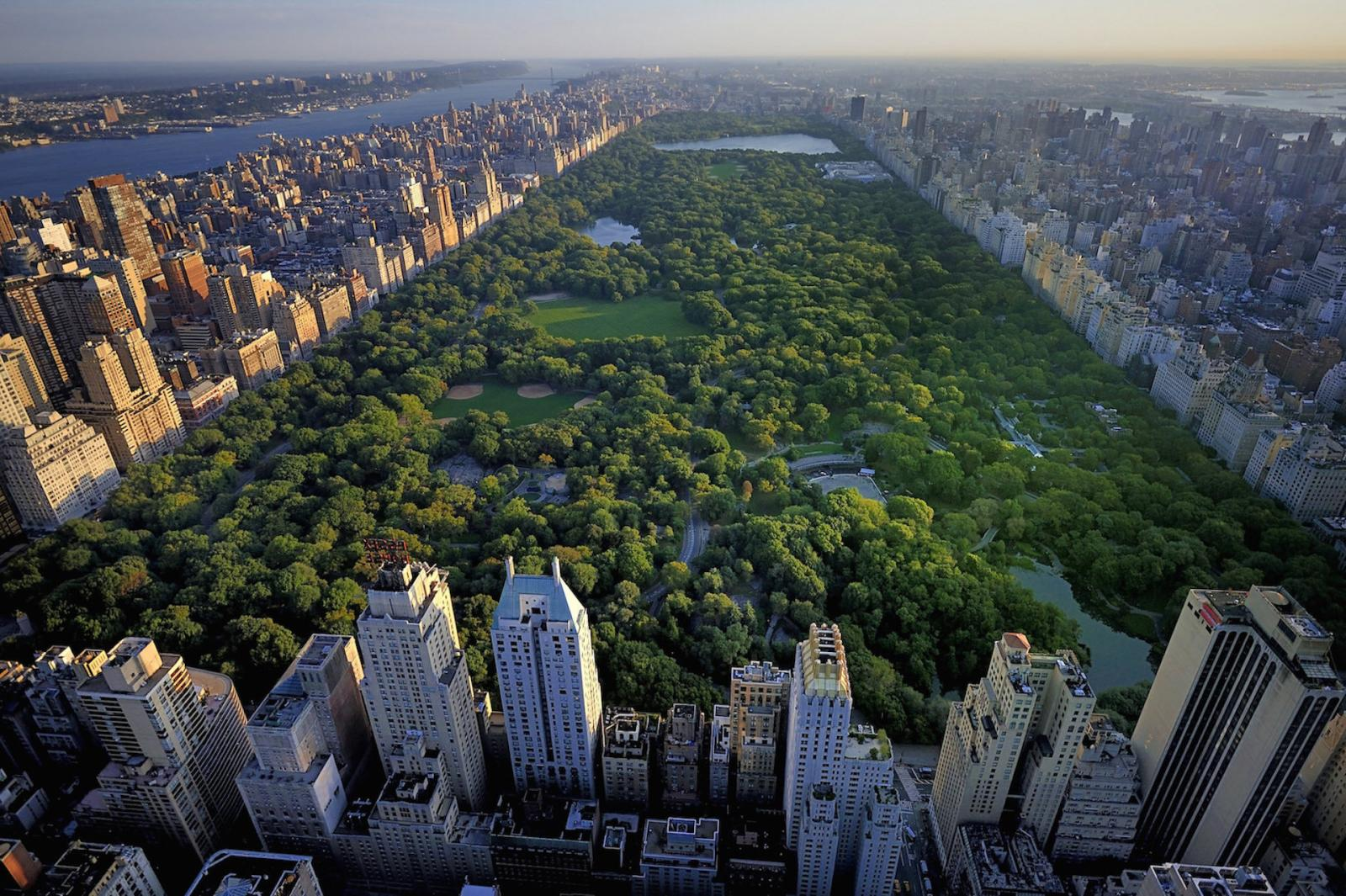 Central Park in New York is an amazing place for recreation and tourism 63