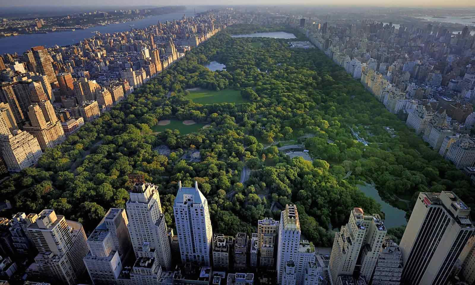 Central Park New York aus der Vogelperspektive