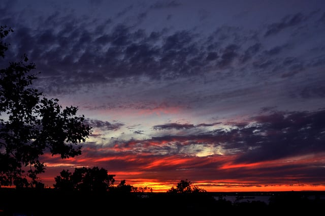 sunsetpark_michaelFleshman