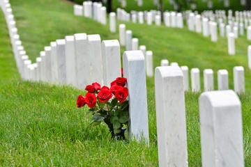 arlington-national-cemetery-und-war-memorials-tour-in-washington-d-c-119384