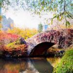Herbst in New York