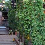 Gallow Green Rooftop Garden New York