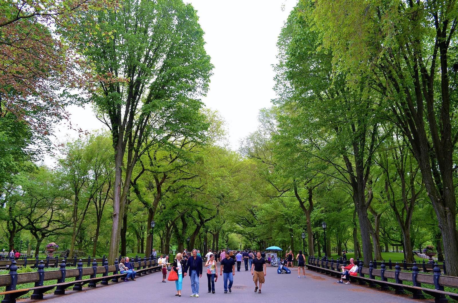 gigi_NYC_TheMallCentralPark