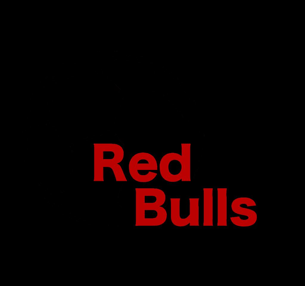 redbulls_160909131737011