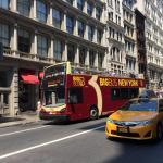 Unsere Hop on Hop off Erfahrungen mit Big Bus