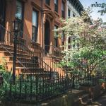 Park Slope Brooklyn & Prospect Heights: Der Insider Guide