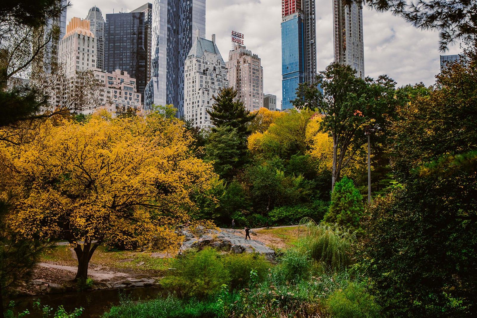 New York Oktober