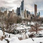 Central Park im Winter & Herbst