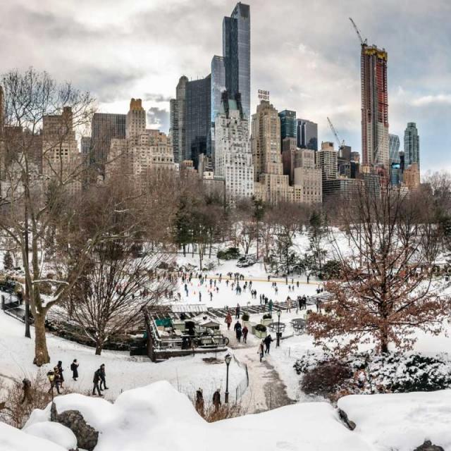 Central Park im Winter & Herbst