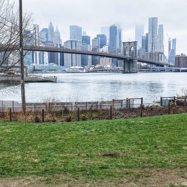 Ein verlassenes Dumbo in NYC